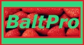 BALTPRO EXPORT