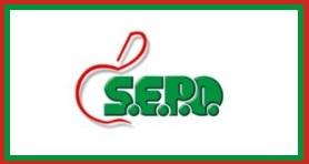 S.E.P.O. SpA EXPORT